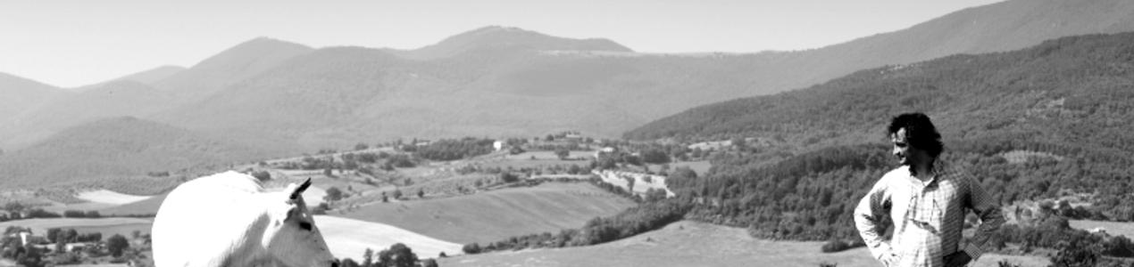 True Umbria - artist living in Umbria