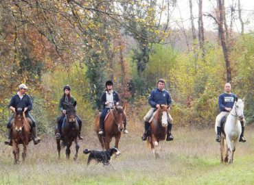 HorseBack Riding and Carriage in Umbria