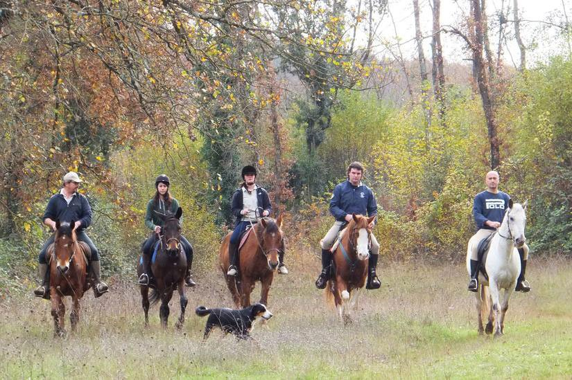 True Umbria - HorseBack Riding and Carriage