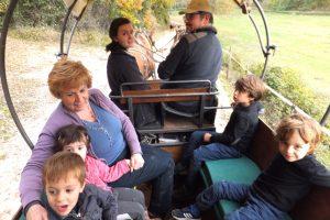 True Umbria - HorseBack Riding and Carriage