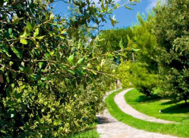 Things to do in Umbria - umbria holiday villa