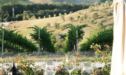 True Umbria - Wine Tastings