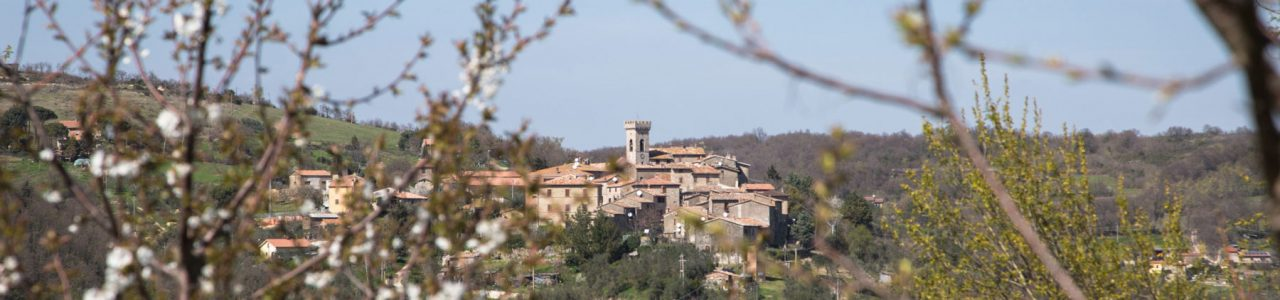 Villa Campo Rinaldo in Umbria - View