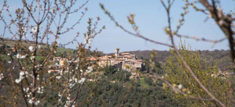 True-Umbria_Campo-Rinaldo-View_01