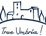 Contact us True Umbria Villa for rent
